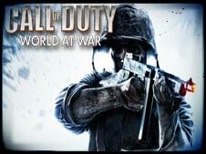 Call of Duty World at War Hack
