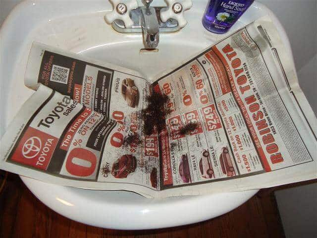 never clean hair out of your sink again